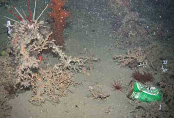 HERMIONE Project : seafloor pollution