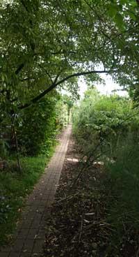Alara garden