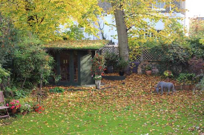 all garden leaves